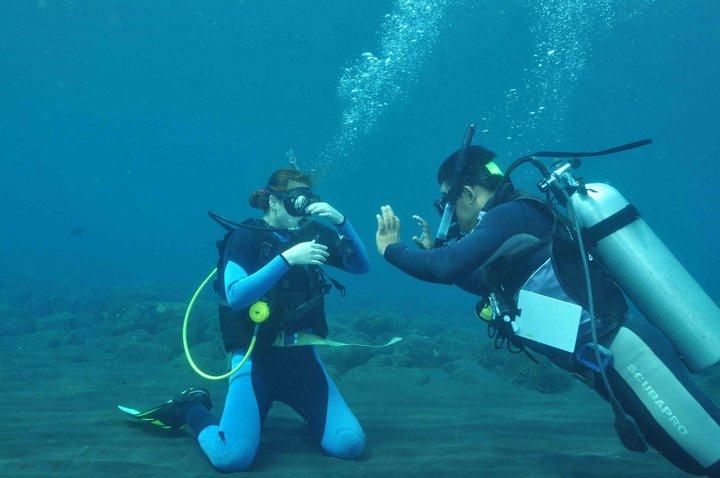 Kursus Diving PADI (3/3)