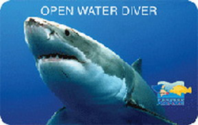 padi-open-water-divers-card