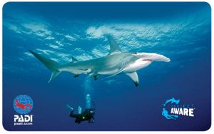 New Project AWARE Card 2014 - Hammerhead Shark