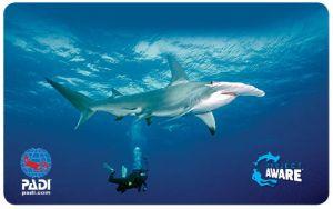 New Project AWARE Card 2014 - Hammerhead Shark
